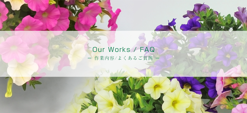 Our Works/FAQ